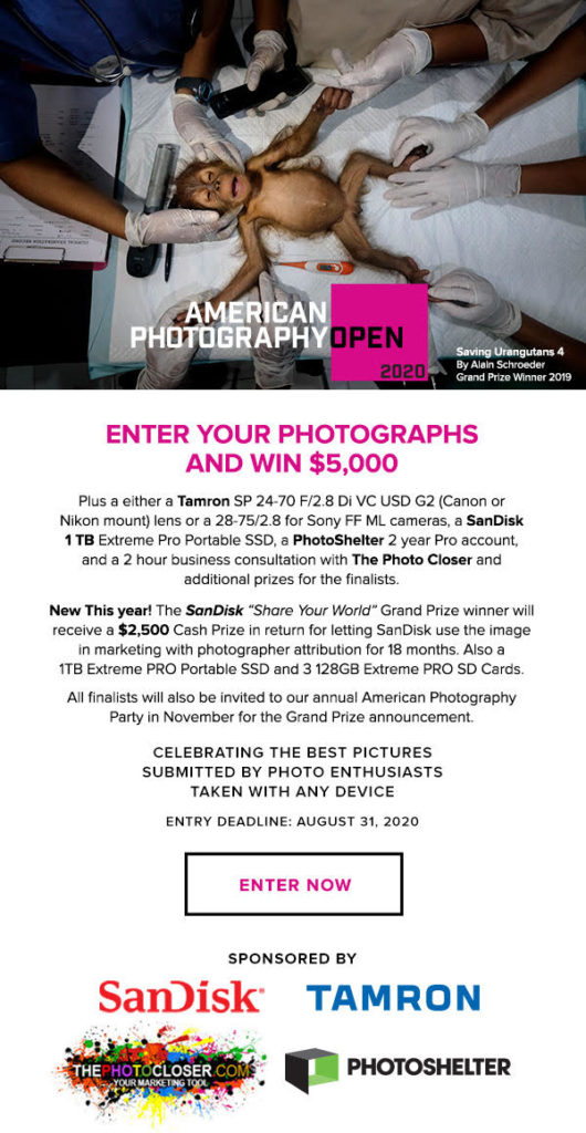 American Photography Open 2020